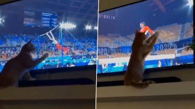 Viral Video: टोक्यो ओलंपिक्स में जिमनास्टों का प्रदर्शन देख टीवी के सामने बैठी बिल्ली भी हुई मस्त, देखिए लोटपोट कर देना वाला वीडियो