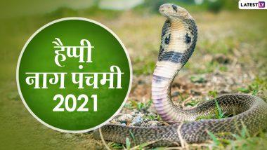 Nag Panchami 2021 HD Images: नाग पंचमी के इन आकर्षक Photo Wishes, WhatsApp Status, Facebook Greetings, GIFs, Wallpapers के जरिए दें प्रियजनों को बधाई