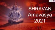 Shravan Amavasya 2021: कब है श्रावण अमावस्या? क्यों है यह अन्य अमावस्याओं से श्रेष्ठ? जानें इस दिन क्या करने से मिलती है सुख एवं समृद्धि?