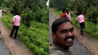 पेड़ से उतर रहे तेंदुए पर जब बेवजह पत्थर मारने लगे लोग, उनकी हरकत को देख भड़का सोशल मीडिया यूजर्स का गुस्सा (Watch Viral Video)
