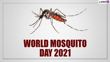 World Mosquito Day 2021: मच्छरों के आतंक से हैं परेशान, इन 5 कारगर घरेलू नुस्खों से पाएं निजात