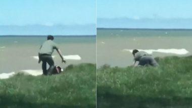 पानी में गिरा कुत्ता तो मसीहा बनकर शख्स ने ऐसे बचाई उसकी जान, वीडियो हुआ वायरल (Watch Viral Video)