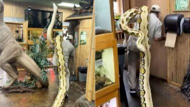 Shocking! 22 फुट लंबे सांप को कंधे पर लेकर घूमता दिखा शख्स, Viral Video देख चकरा जाएगा आपका सिर