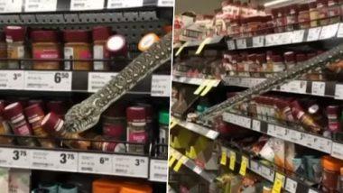 सिड़नी: सुपरमार्केट में तीन मीटर लंबे अजगर को देख महिला के उड़े होश, रेस्क्यू कर झाड़ियों में छोड़ा गया (Watch Viral Video)