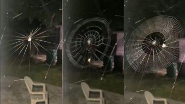 क्या आपने कभी मकड़ी को अपना जाल बुनते देखा है? यह Viral Video देख आपको नहीं होगा अपनी आंखों पर यकीन