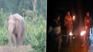 छत्तीसगढ़: सरगुजा जिले में हाथी के डर से मणिपत गांव के निवासियों ने छोड़ा घर, रहना पड़ रहा है स्कूल में