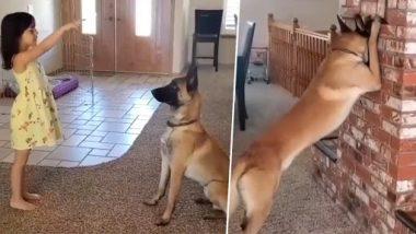 Viral Video: छोटी बच्ची के साथ लुका-छिपी खेलते कुत्ते का क्लिप वायरल, आपने पहले कभी नहीं देखा होगा ऐसा वीडियो