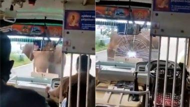 Elephant Viral Video: यात्रियों से भरी बस पर फूटा हाथी का गुस्सा, वायरल वीडियो में देखें कैसे ड्राइवर ने किया इस स्थिति का सामना