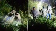Bear Attack: जोशीमठ इलाके में वन अधिकारियों पर टूट पड़ा भालू, चलानी पड़ी गोली, मौत- देखें खौफनाक वीडियो