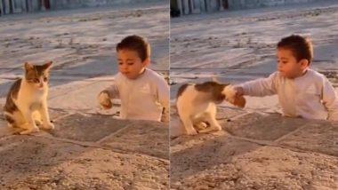 Viral Video: 'शेयरिंग इज केयरिंग' का छोटे बच्चे ने दिया संदेश, बिल्ली को अपना खाना ऑफर कर जीता सबका दिल