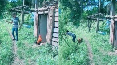 मुर्गे को परेशान करना लड़के को पड़ा भारी, मिला ऐसा सबक कि जिंदगी भर रखेगा याद (Watch Viral Video)