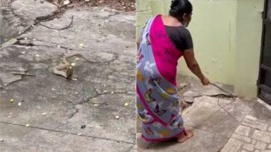 Snake Viral Video: घर में घुसे खतरनाक सांप का महिला ने हिम्मत से किया सामना, नागराज को ऐसे दिखाया बाहर का रास्ता