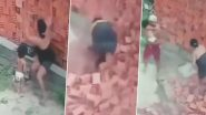 Viral Video: बच्चे पर आनेवाली मुसीबत को मां ने बड़ी ही बहादुरी से लिया अपने सिर, वीडियो देख हो जाएंगे इमोशनल
