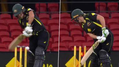 Aus(W) vs Ind(W) 2nd T20I 2021: शिखा पांडे की खतरनाक इन-स्विंग गेंद पर बोल्ड हुईं ऑस्ट्रेलियाई कप्तान एलिसा हीली, वीडियो देख आप भी हो जाएंगे रोमांचित