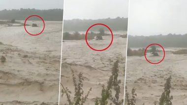Viral Video: उत्तराखंड में उफनती नदी में फंसा हाथी, वायरल वीडियो में देखें कैसे गजराज ने सूझ-बूझ से बचाई अपनी जान