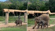 झूल में लगे टायर में फंसा पैर तो परेशान हो गया नन्हा हाथी, मां हथिनी ने की बाहर निकलने में मदद (Watch Viral Video)