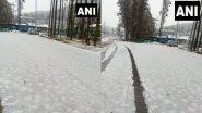 Jammu-Kashmir: घाटी में बदला मौसम का मिजाज़, पहलगाम में पहली बर्फबारी की तस्वीरें देख गदगद हो जाएगा दिल!